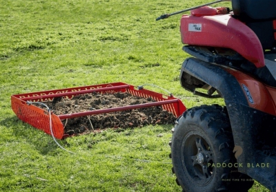 How to maintain a healthy horse paddock
